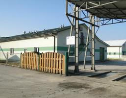 Obiekt na sprzedaż, Łopuszno, 4680 m²
