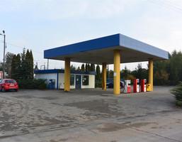Lokal użytkowy na sprzedaż, Strzygi, 4247 m²