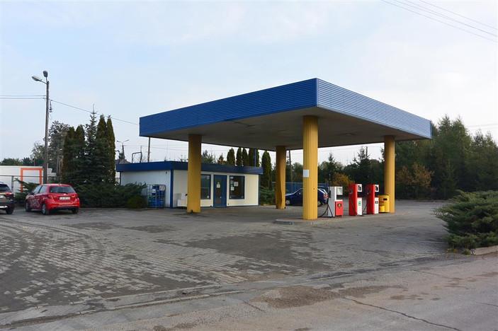 Lokal użytkowy na sprzedaż, Strzygi, 4247 m² | Morizon.pl | 3937
