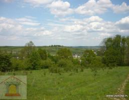Działka na sprzedaż, Toporowice Widokowa z potencjałem, 22000 m²