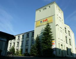 Lokal użytkowy do wynajęcia, Łódź Górna, 270 m²