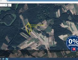 Działka na sprzedaż, Tomkowo gm.Wąpielsk, 40700 m²
