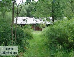 Działka na sprzedaż, Dwernik, 6001 m²