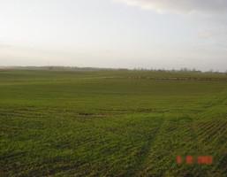 Działka na sprzedaż, Siadło Górne, 3000 m²