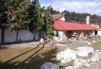 Handlowo-usługowy na sprzedaż, Zielona Góra, 14100 m²