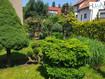 Mieszkania Gdańsk Siedlce 94m2 sprzedaż  - kamienica ul.Wyczółkowskiego Leona