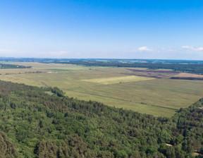 Dom w inwestycji Działki nad morzem - Karwieńskie Błot..., Karwieńskie Błoto Drugie, 3134 m²