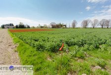 Działka na sprzedaż, Pólko, 1000 m²