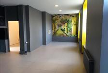 Lokal użytkowy do wynajęcia, Łódź Śródmieście, 68 m²