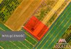 Morizon WP ogłoszenia | Działka na sprzedaż, Szpetal Górny, 3000 m² | 7309