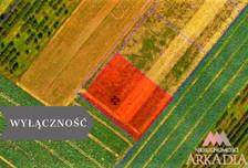 Działka na sprzedaż, Szpetal Górny, 3000 m²
