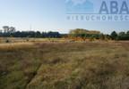 Działka na sprzedaż, Golina-Kolonia, 48400 m²   Morizon.pl   9181 nr16