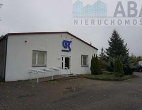 Magazyn, hala na sprzedaż, Koło, 980 m²