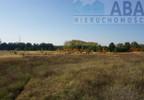 Działka na sprzedaż, Golina-Kolonia, 48400 m²   Morizon.pl   9181 nr14