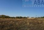 Działka na sprzedaż, Golina-Kolonia, 48400 m²   Morizon.pl   9181 nr8
