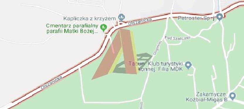 Działka na sprzedaż, Kraków Olszanica, 5000 m² | Morizon.pl | 9832