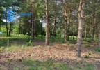 Działka na sprzedaż, Mieszkowo, 3000 m² | Morizon.pl | 7422 nr2