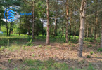 Morizon WP ogłoszenia | Działka na sprzedaż, Mieszkowo, 3000 m² | 3482