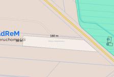 Działka na sprzedaż, Kuriany, 6000 m²
