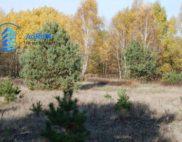 Morizon WP ogłoszenia | Działka na sprzedaż, Wojcieszyn Trakt Królewski, 1200 m² | 4641