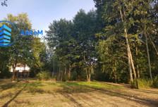 Działka na sprzedaż, Borowina Topolowa, 3846 m²