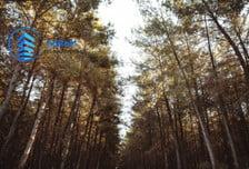 Działka na sprzedaż, Uhowo, 10137 m²