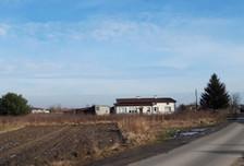 Działka na sprzedaż, Bielawa, 2500 m²
