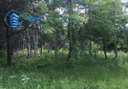 Działka na sprzedaż, Zawodne, 3000 m²   Morizon.pl   8701 nr2