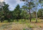 Morizon WP ogłoszenia | Działka na sprzedaż, Hornówek, 18000 m² | 9131