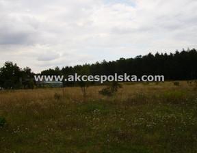 Działka na sprzedaż, Załuski, 4300 m²