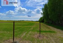 Działka na sprzedaż, Niemojewo, 800 m²