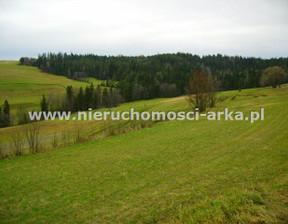Działka na sprzedaż, Rabka-Zdrój, 1000 m²