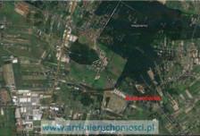 Działka na sprzedaż, Kuleszówka, 68346 m²