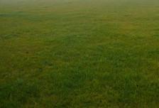 Działka na sprzedaż, Błonie-Wieś Bieniewo Parcela, 28900 m²