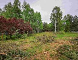 Morizon WP ogłoszenia   Działka na sprzedaż, Aleksandria Aleksandria Druga, 2721 m²   9506