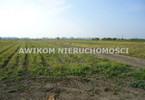 Morizon WP ogłoszenia   Działka na sprzedaż, Chlebnia, 90000 m²   6119