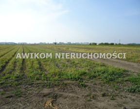 Działka na sprzedaż, Chlebnia, 90000 m²