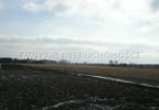 Działka na sprzedaż, Czerwona Niwa, 14800 m² | Morizon.pl | 2080 nr9