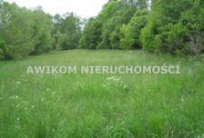 Działka na sprzedaż, Budy Zosine, 10500 m²
