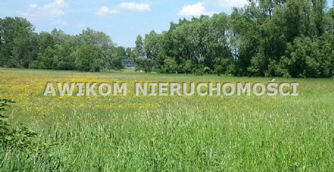 Morizon WP ogłoszenia   Działka na sprzedaż, Kopiska, 1739 m²   9203