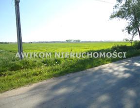 Działka na sprzedaż, Kłudno Nowe, 49800 m²