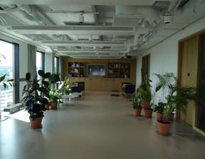 Biuro do wynajęcia, Gdańsk Przymorze, 50 m²