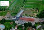 Fabryka, zakład na sprzedaż, Czarnocin, 7500 m² | Morizon.pl | 1939 nr4