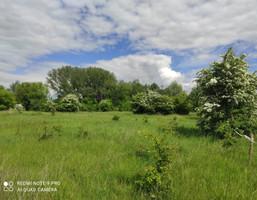 Morizon WP ogłoszenia | Działka na sprzedaż, Szczypiorno, 2546 m² | 8245