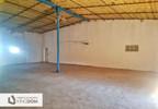 Magazyn, hala do wynajęcia, Fabianów, 800 m² | Morizon.pl | 0391 nr3