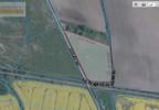 Działka na sprzedaż, Dobrzykowice Krótka, 8100 m² | Morizon.pl | 5977 nr2