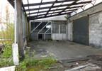 Działka na sprzedaż, Dąbrowice Wiejska 63, 14700 m² | Morizon.pl | 5930 nr5