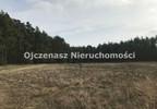 Działka na sprzedaż, Czarże, 10251 m²   Morizon.pl   9219 nr2