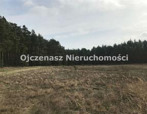 Działka na sprzedaż, Czarże, 10251 m²