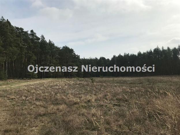 Morizon WP ogłoszenia   Działka na sprzedaż, Czarże, 10251 m²   5279
